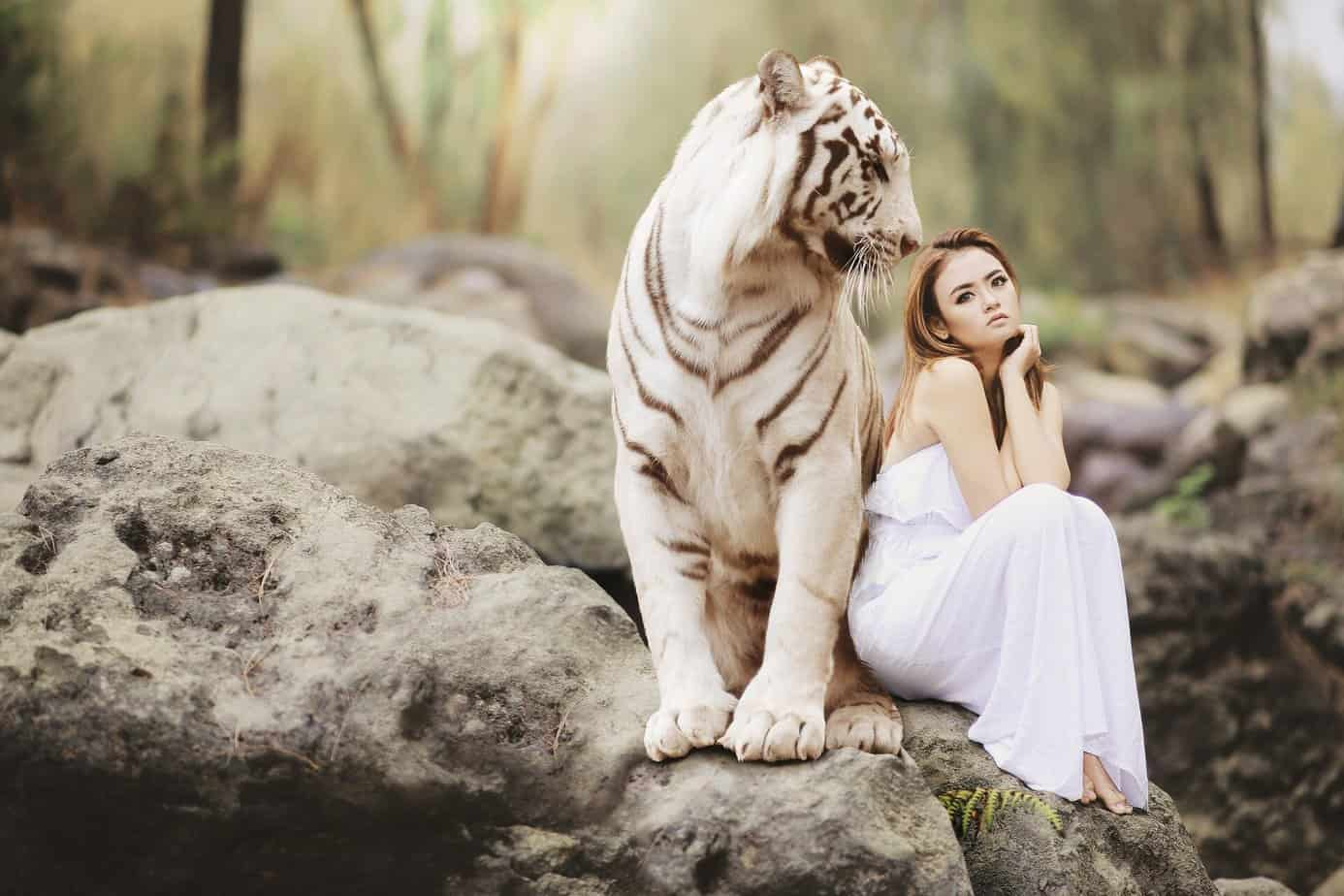 партньор-жена-тигър
